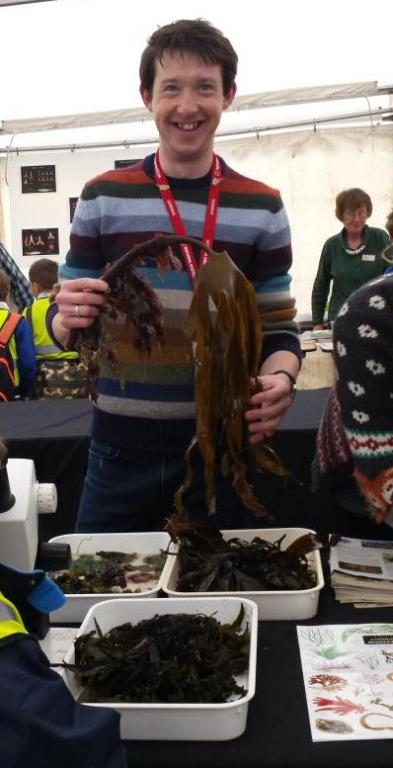 Anthony inspiring others about seaweeds at this year's Lyme Regis Fossil Festival, which took place on the first weekend of May