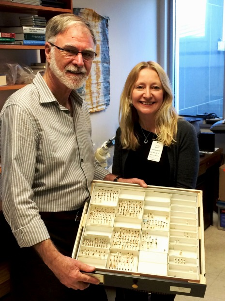 Photo showing Terry and Beulah holding a specimen tray with pinned beetles
