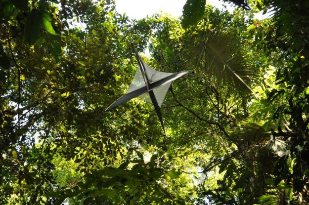 Photo showing the trap in situ within the canopy of the forest