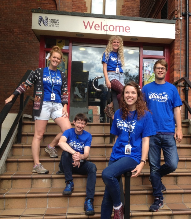 Photo of the team on the steps of the entrance to the Museum in Tring