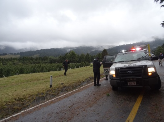 Photo showing the damaged vehicle on the road with storm clouds and forest in the background