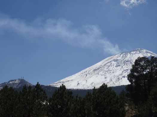 Photo taken during the day showing the volcano with a light, long plume of gas wafting away to the left in the wind