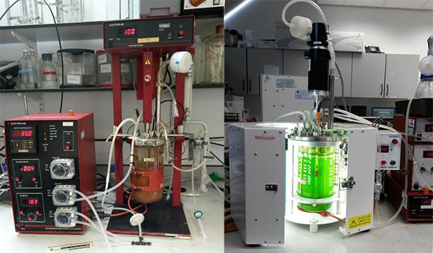 Two bioreactors