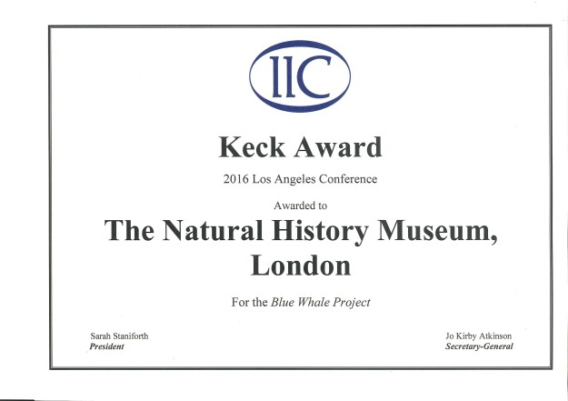 Photograph of the certificate