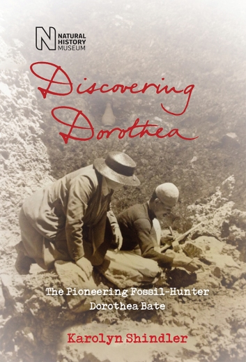An image of the front cover of the book Discovering Dorothea. The full length sepia image is of the right hand side of Dorothea Bate as she is kneeing down in a excavation pit, surrounded by the sides of the pit. She is leaning her right hand on a large rock, as she looks to her left, at an excavation worker who is using a brush tool on the rocks in front of him. Dorothea's face is obscured by a wide brimmed dark hat, she is wearing a dark jacket and long skirt, walking shoes and you can just see a light skirt collar under the jacket. Only the upper body of the male worker can be seen, he is wearing a dark long sleeved top and a light skull cap. The right hand side of his face can be seen, but the detail is difficult. The black Natural History Museum logo is at the top left of the cover, with Discovering Dorothea written in red handwriting font in the top half of the cover, above the image of Dorothea. Immediately underneath Dorothea in type are the words, The pioneering fossil-hunter Dorothea Bate'. They are written in white. Underneath this, at the bottom of the image, in red type is the name of the author Karolyn Shindler.