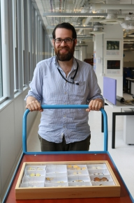Our digitiser, Peter, transporting a temporary drawer of type specimens