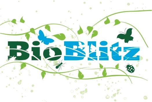 BioBlitzflowerlogo