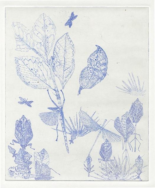 fig.16.leaf-blue72